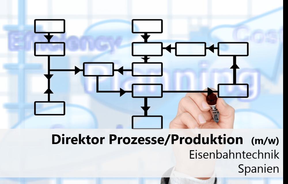 Direktor Prozesse/Produktion